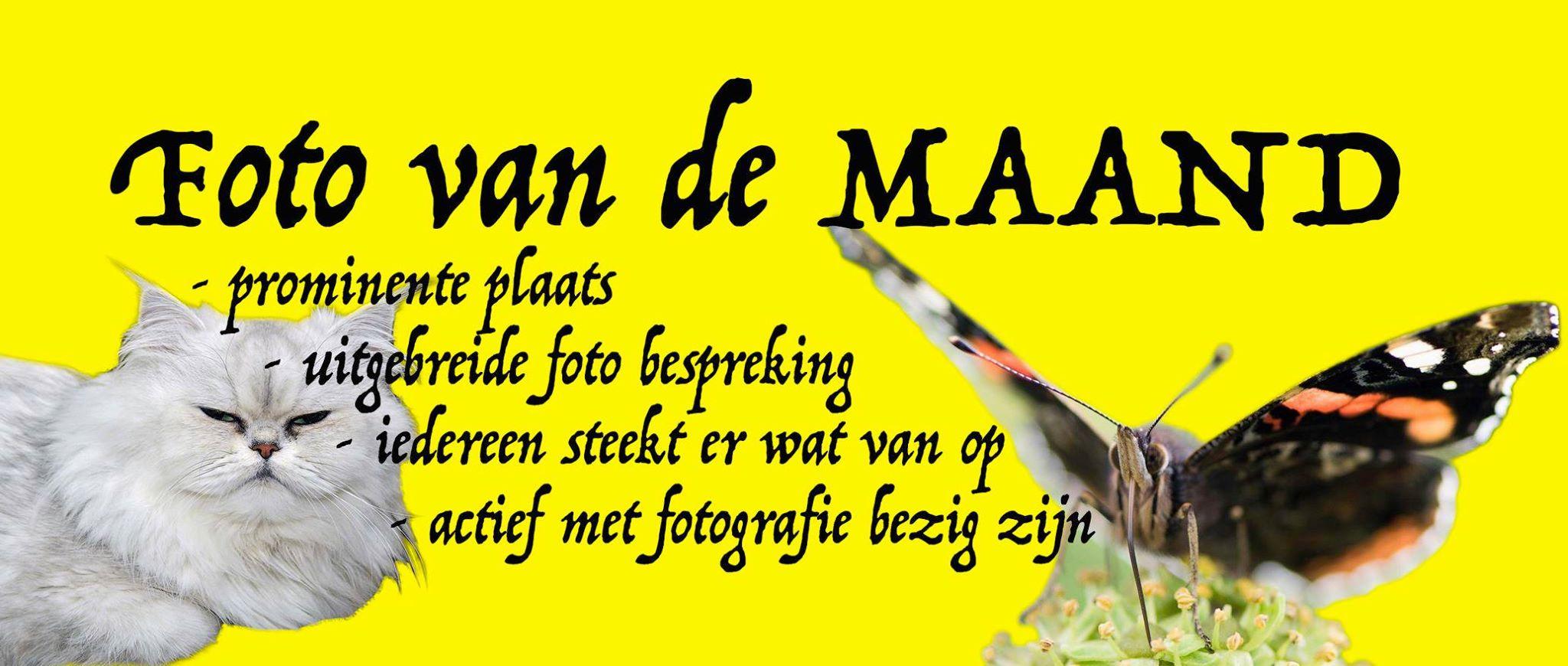 foto-van-de-maand-banner
